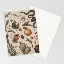 Florida Nature Walks Stationery Cards
