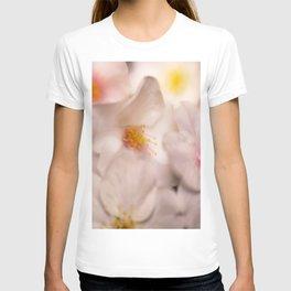 Cluster of Soft White Dogwood Flowers T-shirt