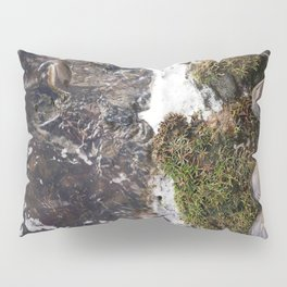 Hiking shoes on riverbed Pillow Sham