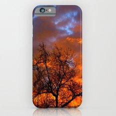 Winter Sunrise Slim Case iPhone 6s