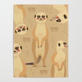 Meerkat, African Wildlife Poster