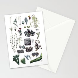 Bryophytes Stationery Cards