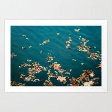autumn sea Art Print