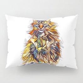 Mixed Up Maine Coon Pillow Sham