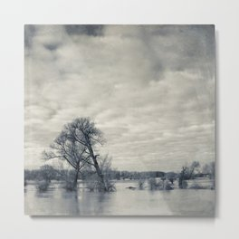 lean on me - flooded meadows Metal Print