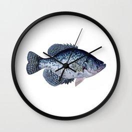black crappie Wall Clock