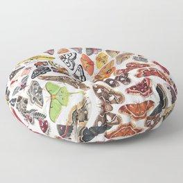 Saturniid Moths of North America Floor Pillow