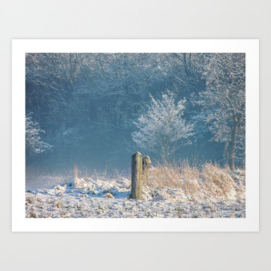 Winter Gate Posts Art Print