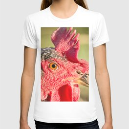 Mesmerized - Chicken T-shirt