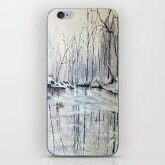 Snowy Lake iPhone & iPod Skin