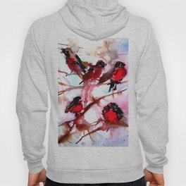 Robins in the Snow Hoody