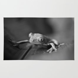 Cute Little Frog (Black and White) Rug