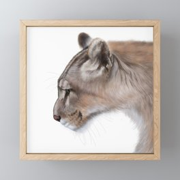 Puma Framed Mini Art Print