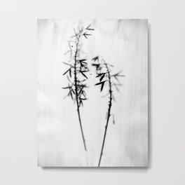 Two Hosta - Black and White Vintage Style Botanical Photograph Metal Print