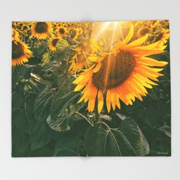 summer in the fields Throw Blanket