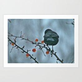 Winterbird Art Print