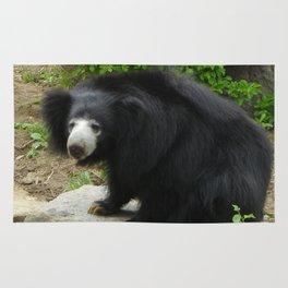 Sloth Bear Rug