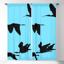 Silhouette of Glossy Ibises In Flight Blackout Curtain