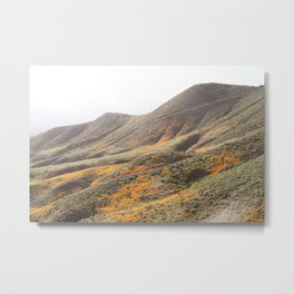 Poppy Super Bloom Pastel Metal Print