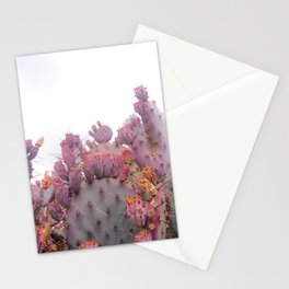 Santa Rita Cactus Stationery Cards