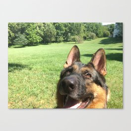 Happy Dog! Canvas Print
