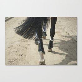Footsteps Canvas Print