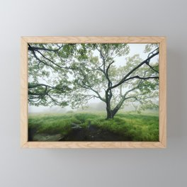 Imagination Itself Framed Mini Art Print