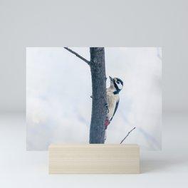 Great spotted woodpecker Mini Art Print