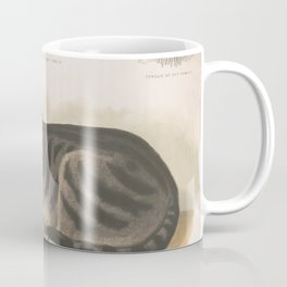Vintage Illustration of a Domestic Cat (1872) Coffee Mug