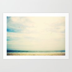 Sea birds Art Print