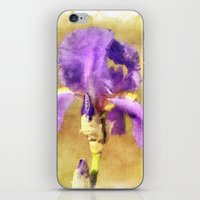 lily iPhone & iPod Skins featuring Lily by Susann Mielke