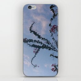 Skyline Euphoria iPhone Skin