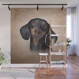 Drawing Dog breed dachshund Wall Mural