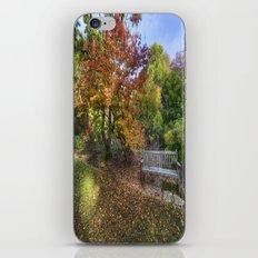 Autumn Bench  iPhone & iPod Skin