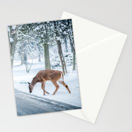 The chill of winter Stationery Cards