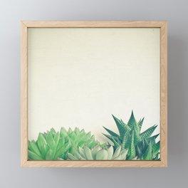 Succulent Forest Framed Mini Art Print