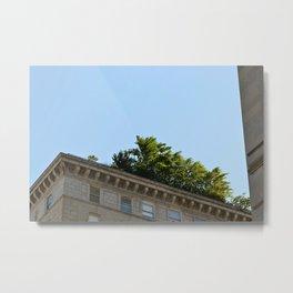 Rooftop Garden Metal Print