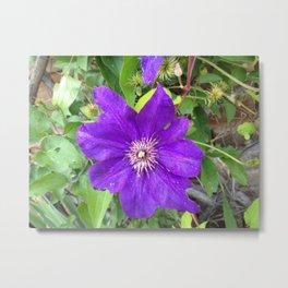 Pretty Flowers 2 Metal Print
