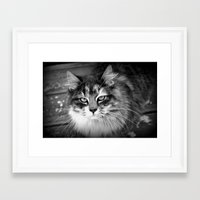 kiki Framed Art Prints featuring Kiki by katio111