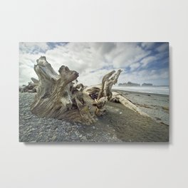 Driftwood on Rialto Beach No 0163 Metal Print