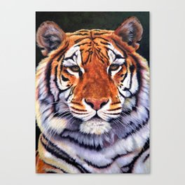 Tiger Sultan of Siberia Canvas Print