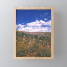 Asphodelus ramosus Framed Mini Art Print