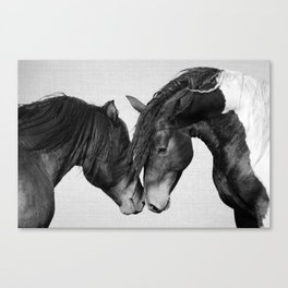 Horses - Black & White 4 Canvas Print