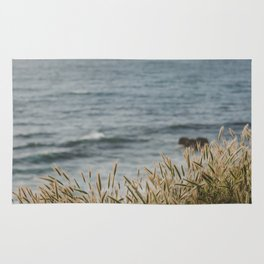 California Coast Rug