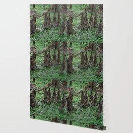 Nefarious Knees Wallpaper