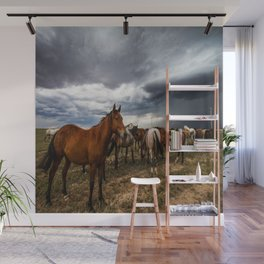 Pride - Horse Watches Over Herd as Storm Approaches Wall Mural