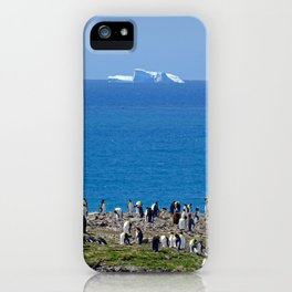 King Penguins in front of an iceberg iPhone Case