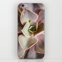 succulent iPhone & iPod Skins featuring succulent by Bonnie Jakobsen-Martin