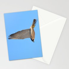 Peregrine Falcon Close Up 2 Stationery Cards