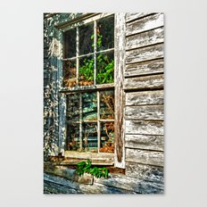 Overgrown Behind the Window Canvas Print
